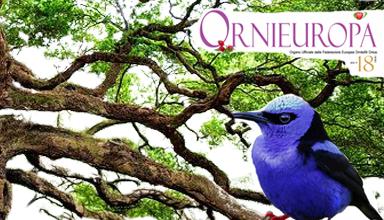 Ornieuropa 18