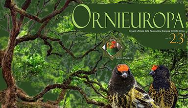 banner-ornieuropa-23