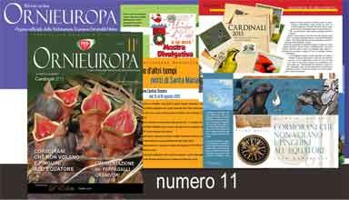 banner-ornieuropa-11
