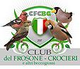 frosone-club