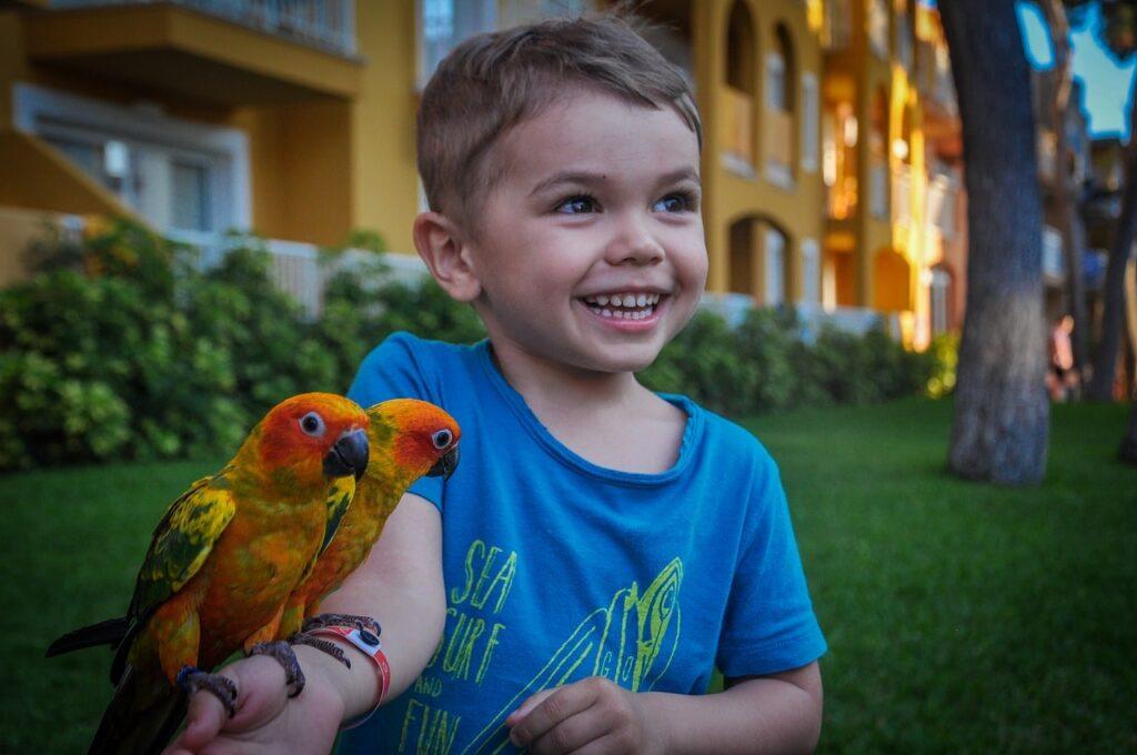 Ragazzo con pappagalli