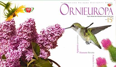 ornieuropa 15